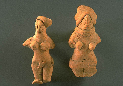 an analysis of the fearures of atal hyk and female figurines Because females do not have a y chromosome, they do not have the sry gene without a functional sry gene, an individual will be female not all tissues in the reproductive tract are bipotential the internal reproductive structures (for example the uterus, uterine tubes, and part of the vagina in.